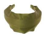 Green silk headband like Blairs at Amazon