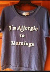 Wildfox Im Allergic To Mornings Sweatshirt at eBay