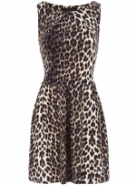 Leopard print dress like Zoes at Dorothy Perkins