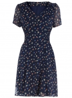 Navy sheer sleeve dress at Dorothy Perkins