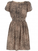 Leopard print dress like Arias at Dorothy Perkins