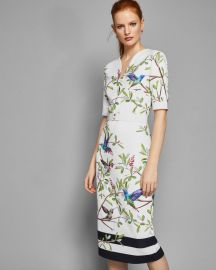 \'Everly\' Highgrove bodycon midi dress by Ted Baker at Ted Baker