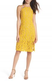 Ali  amp  Jay Plantain Lace Halter Dress at Nordstrom