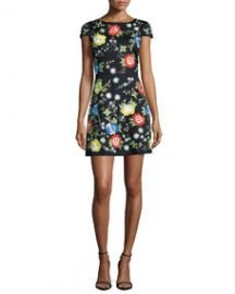 Alice and Olivia Ellen Short-Sleeve Embroidered Dress Multi Colors at Neiman Marcus