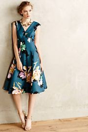 Baikal Dress at Anthropologie