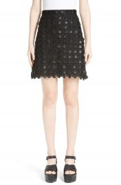 Carven 3D Embroidered Miniskirt at Nordstrom