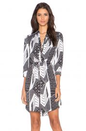 Diane von Furstenberg Freya Dress at Revolve