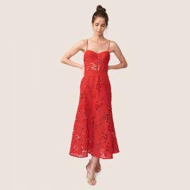 Eden Embroidered Dress at Allen Schwartz