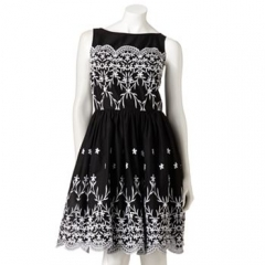 Expo embroidered dress at Kohls