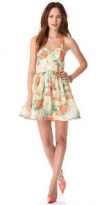 Fleur bustier dress by Alice and Olivia at Shopbop