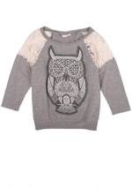 Grey owl sweatshirt with lace shoulders at Delias