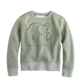 Kids crewcuts for David Sheldrick Wildlife Trust elephant sweatshirt at J. Crew