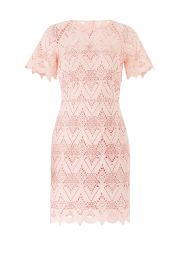Laced Elora Dress by Style Stalker at Rent The Runway