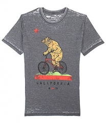 Levis Bike Ride Burnout Tee at Dillards