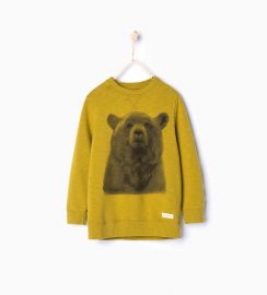 Long Bear Sweatshirt at Zara