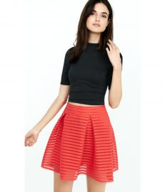 Mesh High Waisted Full Pleated Skirt at Express