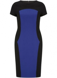 Navy and cobalt pencil dress at Dorothy Perkins
