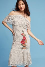 Nicole Miller Gramercy Lace Trumpet Dress at Anthropologie
