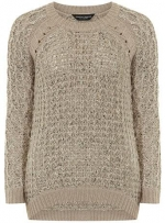 Oat cable raglan jumper at Dorothy Perkins