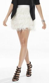 Ostrich Feather Fringe Mini Skirt at Express