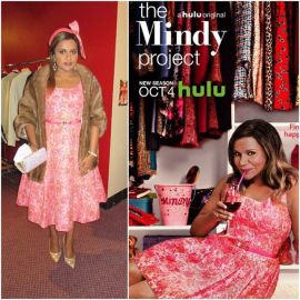 Pink Dress on The Mindy Project at Salvador Perez