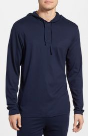 Polo Ralph Lauren Pullover Hoodie at Nordstrom