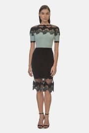 Shell Lace Knit Dress at Orchard Mile