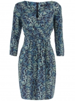 Snake print wrap dress like Robins from Dorothy Perkins at Dorothy Perkins