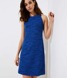 Spacedye Shift Dress by Loft at Loft