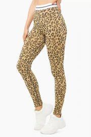 Striped-Trim Leopard Print Leggings at Forever 21