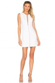 Susannah Bodycon Mini Dress by Elizabeth and James at Revolve