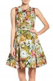 Taylor Dresses Vintage Floral Fit and Flare Dress at Nordstrom