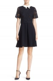 Ted Baker London  Dixxy  Contrast Trim Lace Bodice Fit   Flare Dress at Nordstrom