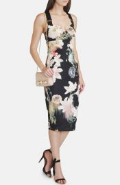 Ted Baker London and39Opulent Bloomand39 Sheath Dress at Nordstrom
