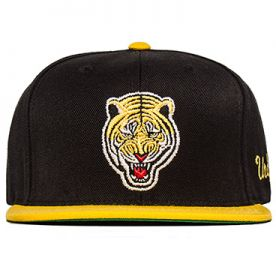 Undefeated Tiger Hat at Wish
