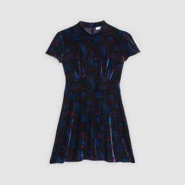 Velvet paisley print dress at Sandro