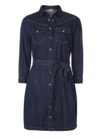 denim shirtdress at Dorothy Perkins