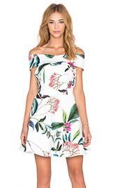 keepsake The Sweetest Thing Mini Dress in Botanic Floral Ivory at Revolve