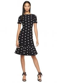 polka dot dress at milly